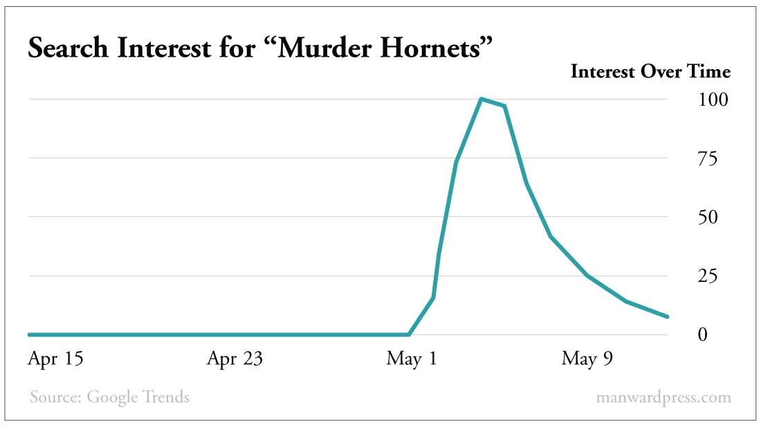 Murder Hornet Chart